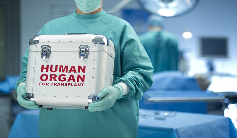A case for the legalisation of organ sale